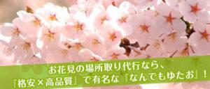 お花見 桜 場所取り