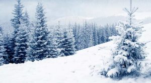 寒い冬に水道管が凍る